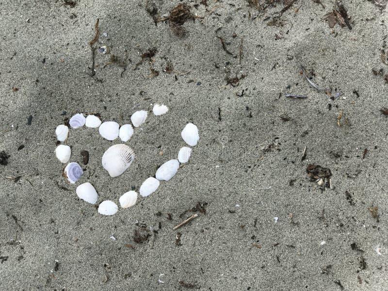 Coração dos shell, praia de Qualicum, BC fotografia de stock royalty free