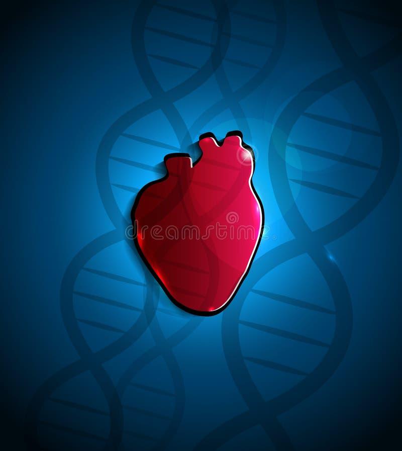 Coração e ADN ilustração stock