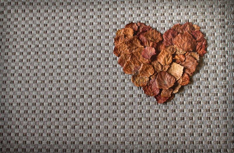Coração feito das folhas de outono/folha imagem de stock