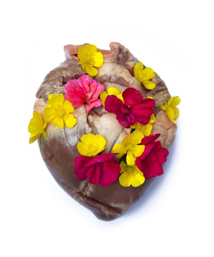 Coração feliz da flor fotos de stock