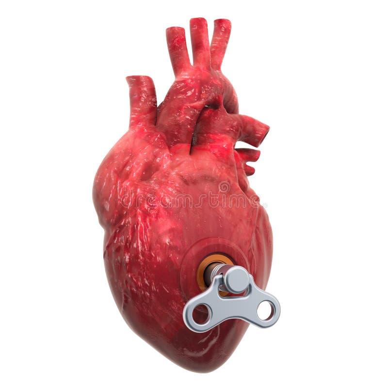 Coração humana com chave de vento Conceito de tratamento e recuperação renderização 3D ilustração royalty free