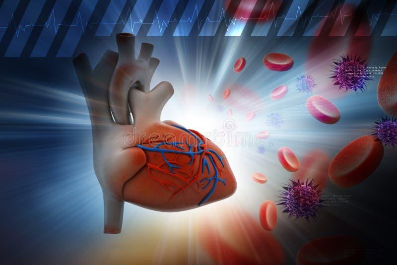 Coração humano com plaqueta e vírus ilustração do vetor
