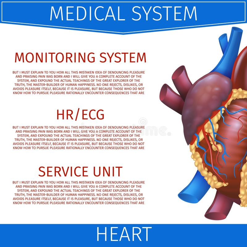 Coração médico do sistema da ilustração realística do vetor ilustração royalty free