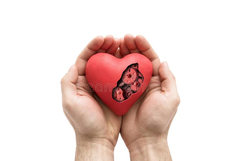 Coração mecânico vermelho nas mãos isoladas no branco fotos de stock royalty free