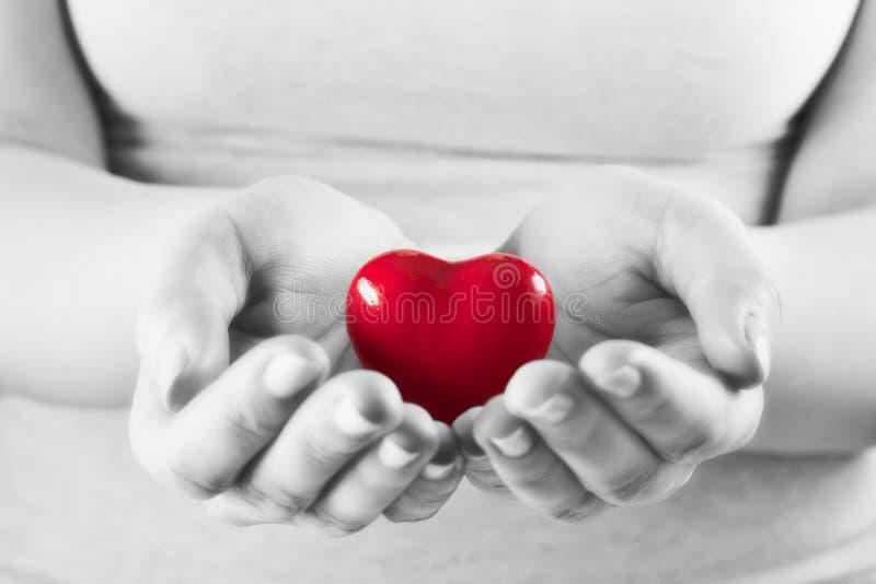 Coração nas mãos da mulher Ame dar, cuidado, saúde, proteção imagem de stock royalty free