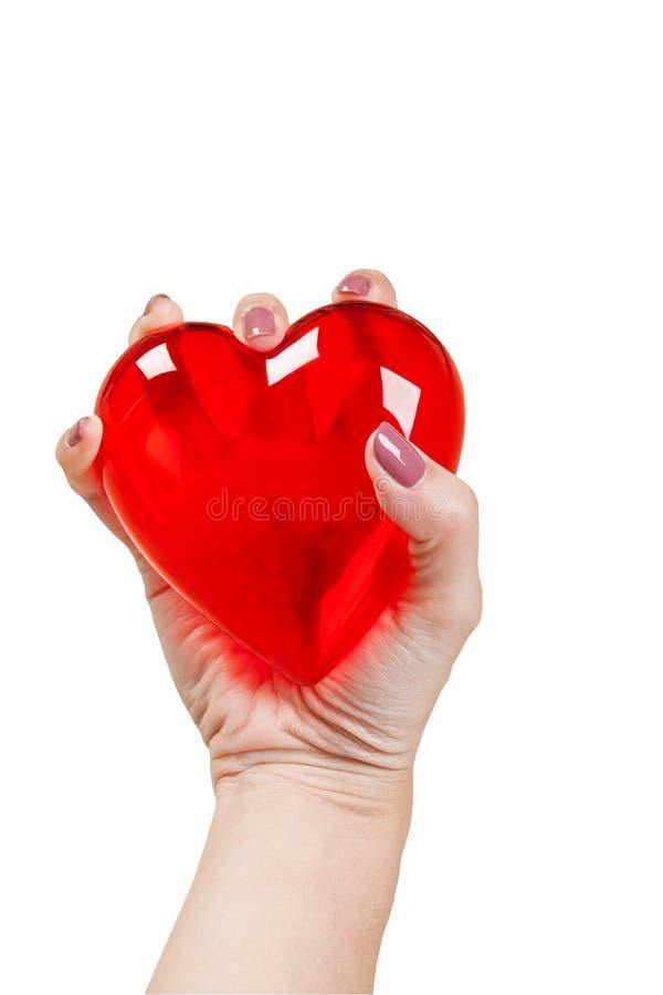 Coração nas mãos isoladas no fundo branco fotografia de stock