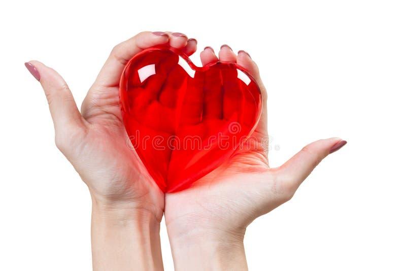 Coração nas mãos isoladas no fundo branco foto de stock royalty free