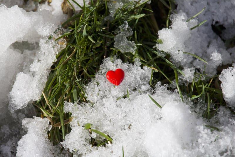 Coração vermelho em um fundo da neve e da grama verde fotografia de stock