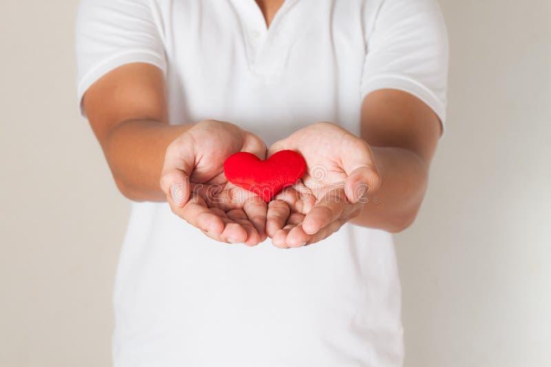 coração vermelho nas mãos do homem, na medicina da saúde e no concep asiáticos da caridade imagem de stock