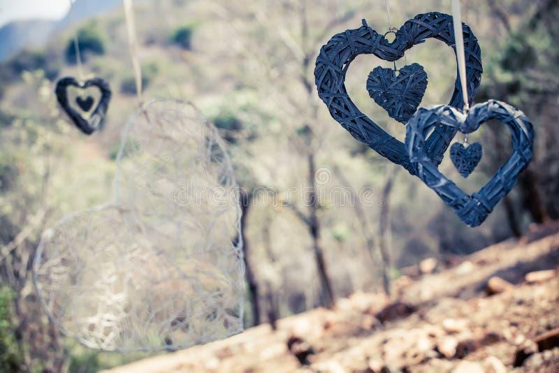 Corações das naturezas foto de stock