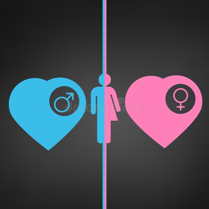 corações do ícone do homem e da mulher, os azuis e os cor-de-rosa com si masculino e fêmea ilustração stock