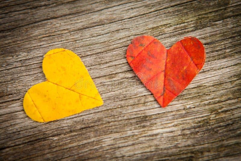 Corações do amor da folha do outono imagens de stock