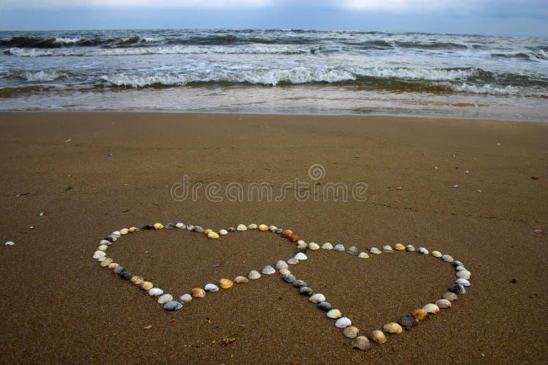 Corações do Seashell imagens de stock royalty free