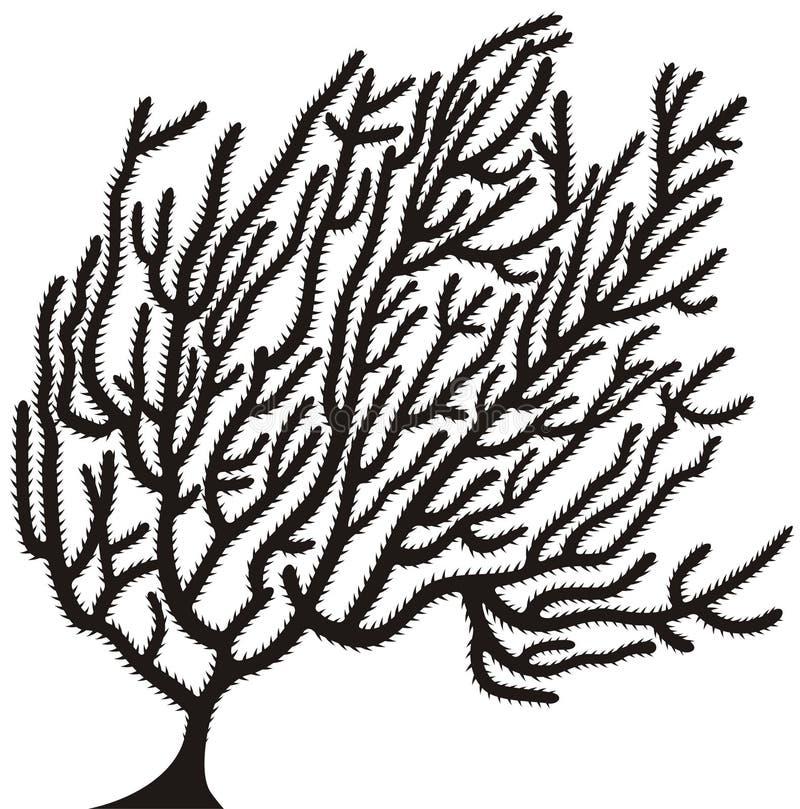 Download Coral stock vector. Image of ocean, bush, branch, coral - 11496641