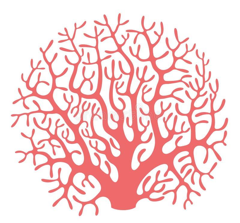 coral illustrazione vettoriale