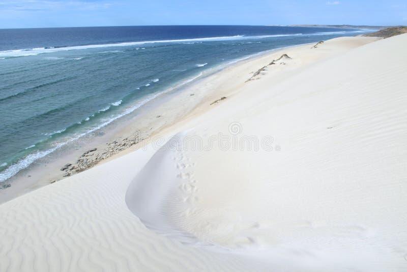 Download Coral Bay, Australia Occidentale Fotografia Stock - Immagine di stupore, fori: 55362808
