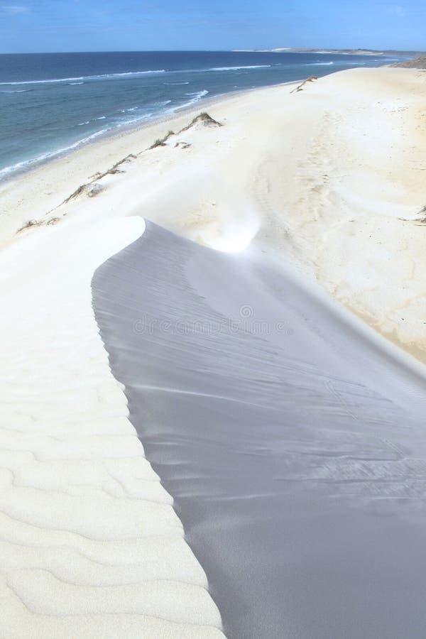 Download Coral Bay, Australia Occidentale Fotografia Stock - Immagine di fori, naturalizzato: 55362912