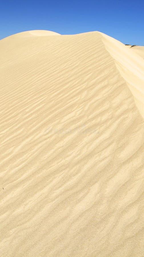 Download Coral Bay, Australia Occidentale Fotografia Stock - Immagine di outback, fori: 55364284