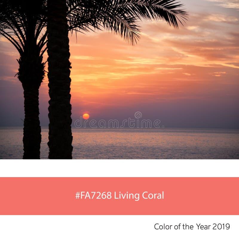 Coral Color vivante de l'année, palmiers au lever de soleil images stock