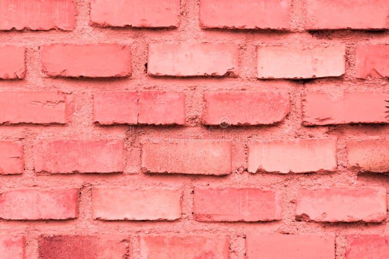 Coral da parede de tijolo foto de stock royalty free