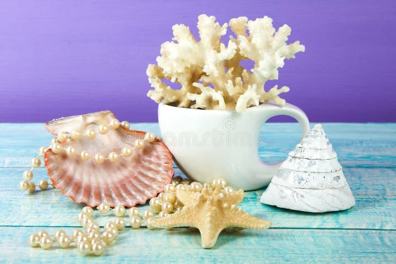 Coral en una taza, gotas, estrellas de mar y conchas marinas imagen de archivo libre de regalías