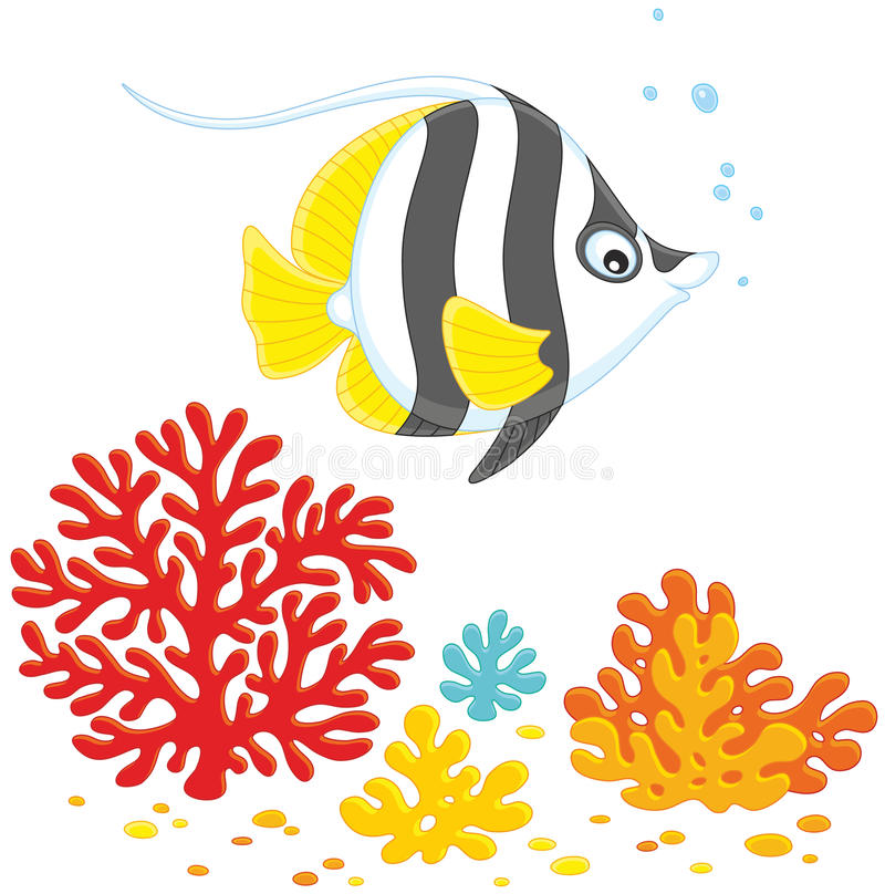 Coral fish. Vector illustration of striped butterfly fish swimming over corals in a tropical sea royalty free illustration