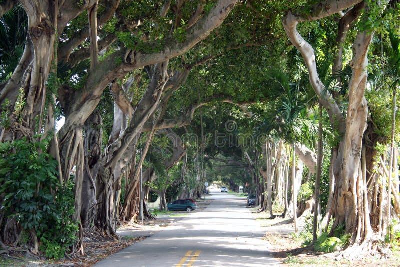 Coral Gables FL fotografia stock libera da diritti