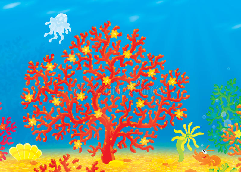 Download Coral, Jellyfish, Crawfish, Shell Stock Illustration - Image: 22972133