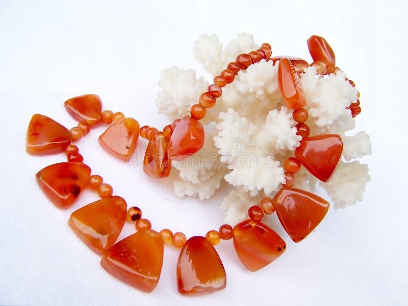 coral kornalina zdjęcia royalty free