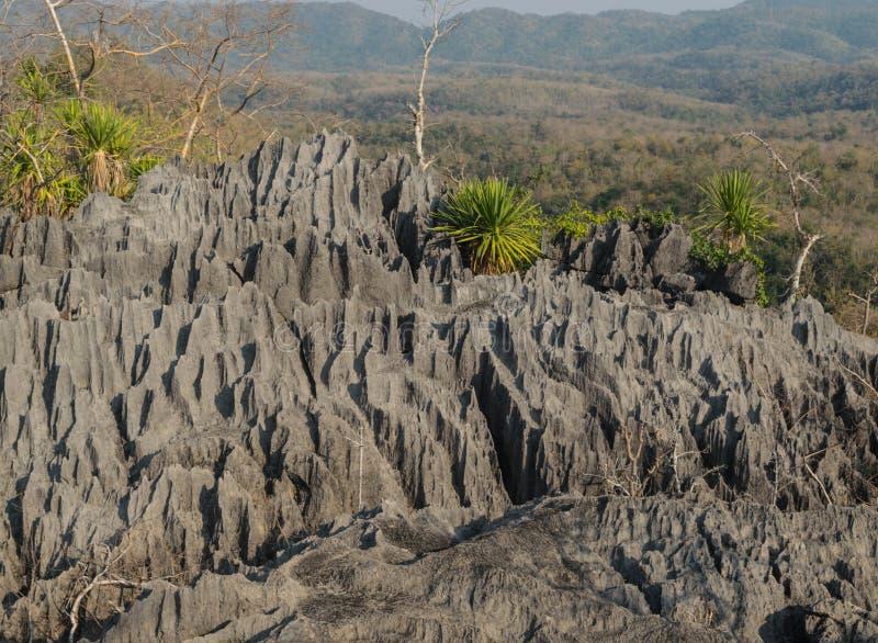 Coral Mountain, Thailand stockbilder