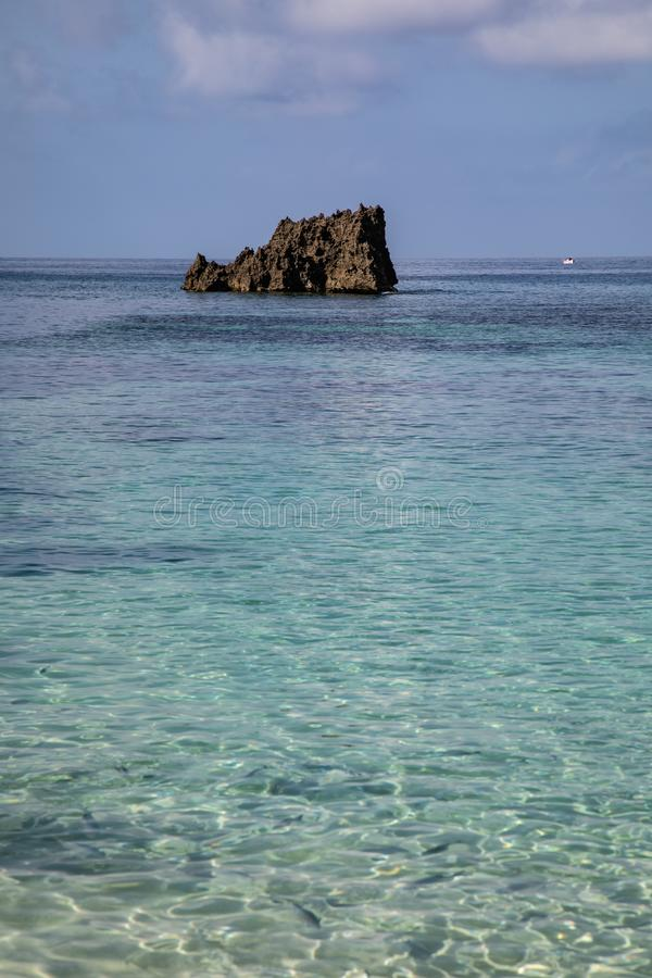 Coral Outcropping royaltyfri bild