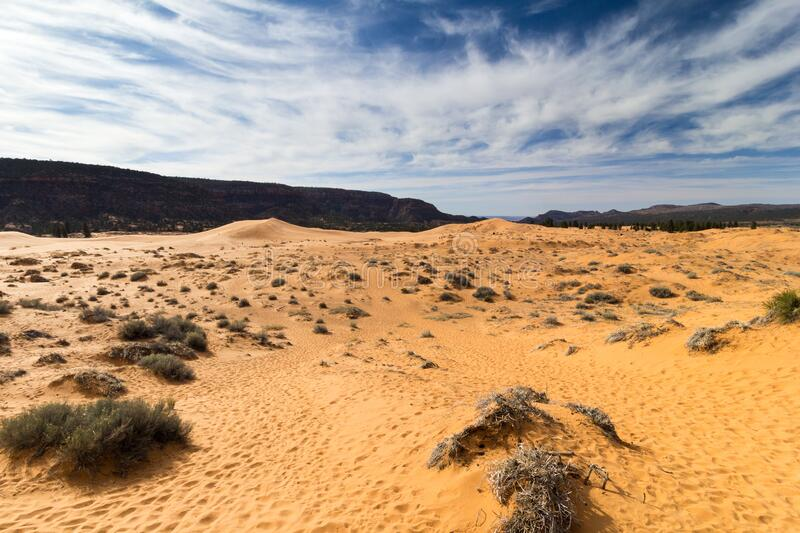 Coral Pink Sand Dunes State Park stock images