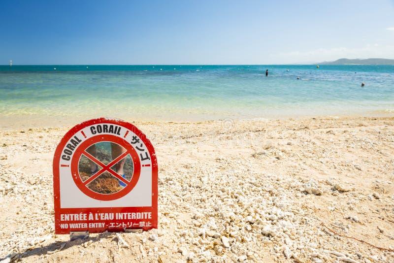 Coral Reef Damage fotografia stock