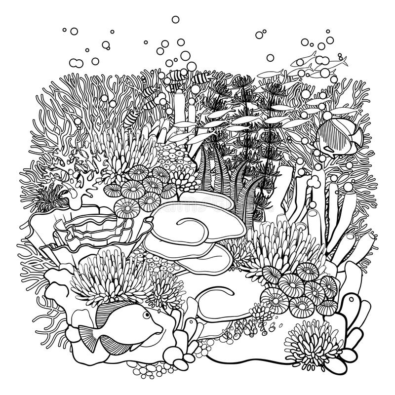 Coral reef design stock vector illustration of page for Coral coloring page
