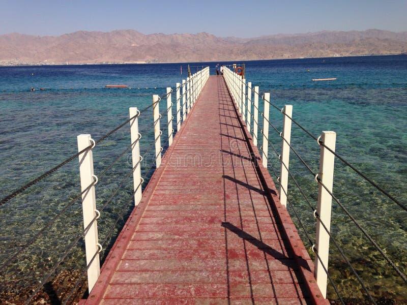 Coral Reef Eilat Israel photos libres de droits
