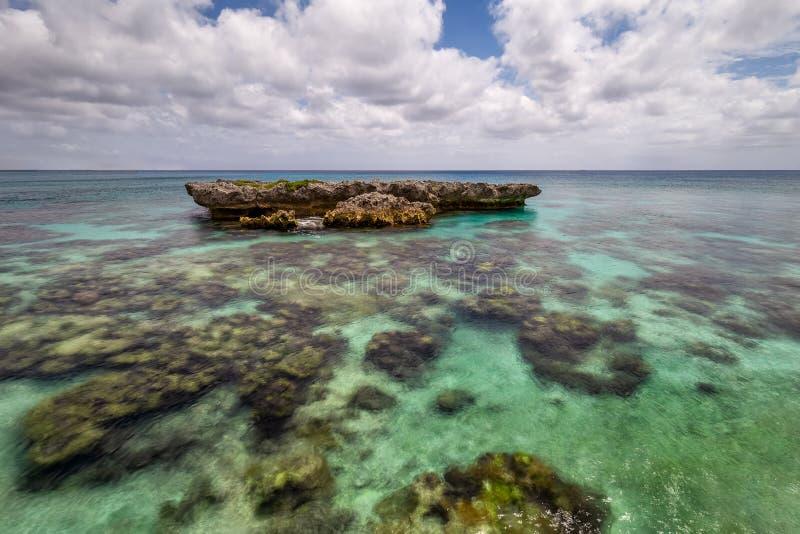 Coral Reef Formation auf der Insel der Stute lizenzfreie stockfotografie