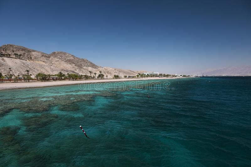 Coral reef in the Gulf of Eilat. Red Sea, israel stock photography