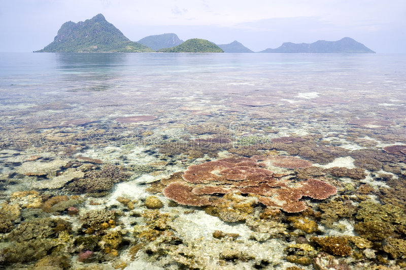 Download Coral Reef And Islands Royalty Free Stock Photography - Image: 4770417