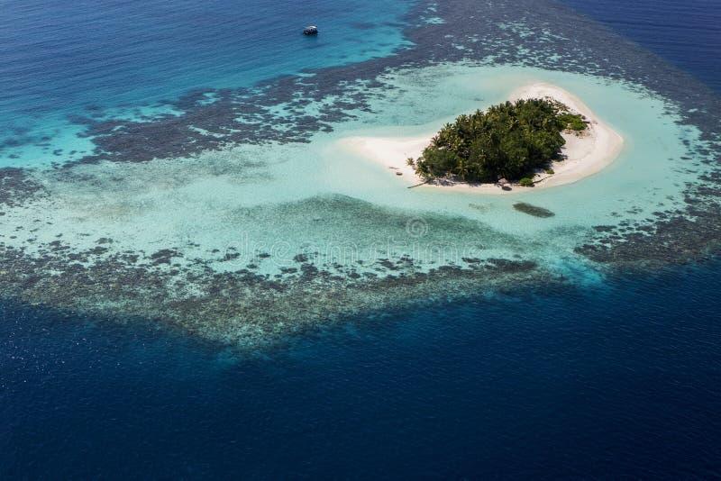 Coral Reef och detalj av atollen royaltyfria bilder