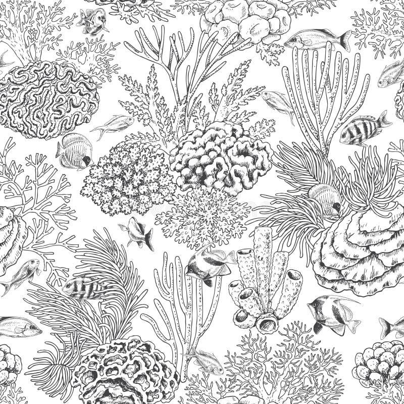 Coral Reef och fiskmodell vektor illustrationer