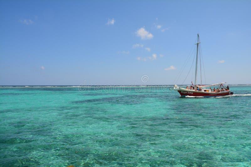 Coral Reef op Caye-Breeuwijzereiland Belize stock afbeelding