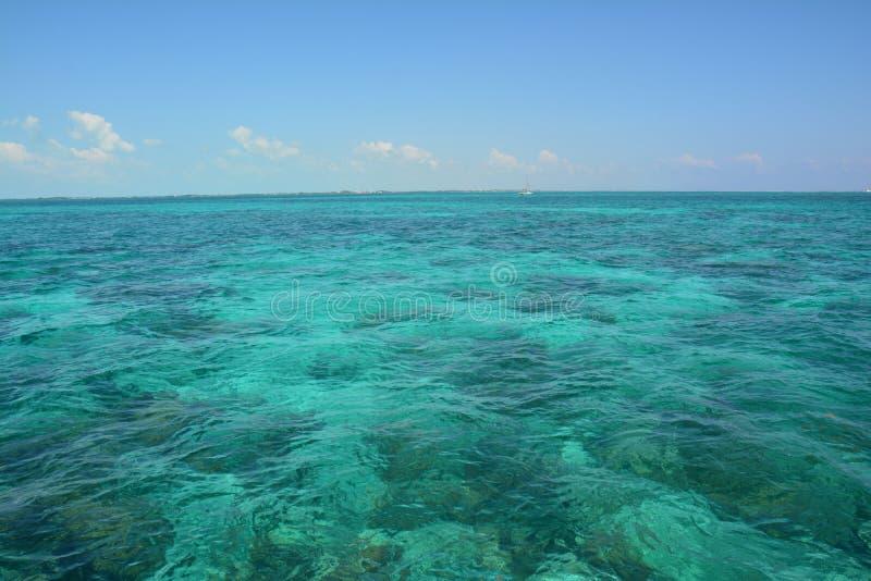 Coral Reef op Caye-Breeuwijzereiland Belize stock fotografie