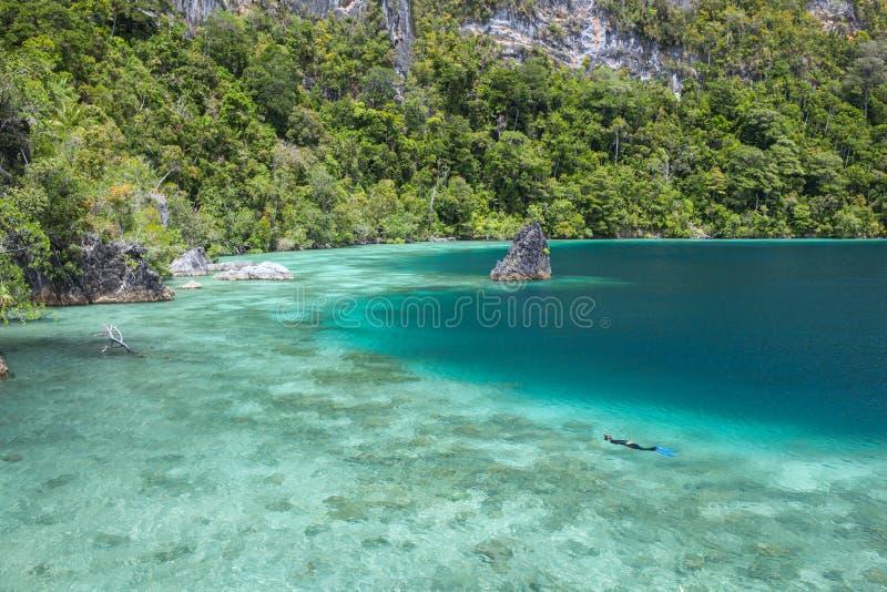 Coral Reef rasa, Snorkeler e ilhas em Raja Ampat imagens de stock royalty free