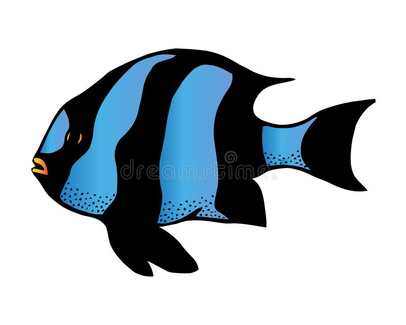 Coral reef tropical fish vector illustration. Vector sea fish isolated on white background. Aquarium fish icon. stock illustration