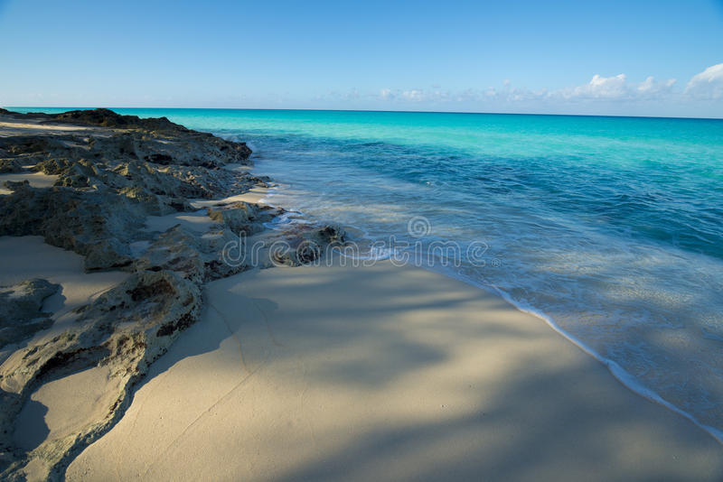 Coral rocks on the beach of Bimini. Bimini of the Bahamas beach with sparkling aqua waters and blue skies royalty free stock images