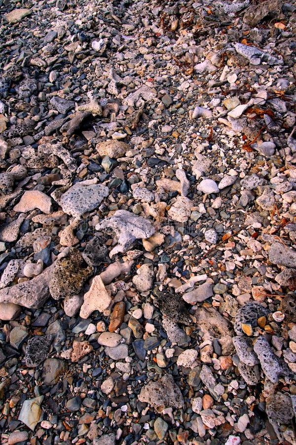 Coral Rock Background Virgin Islands. Coral rocks stretch along the coastline of Tortola in the Caribbean British Virgin Islands royalty free stock photos