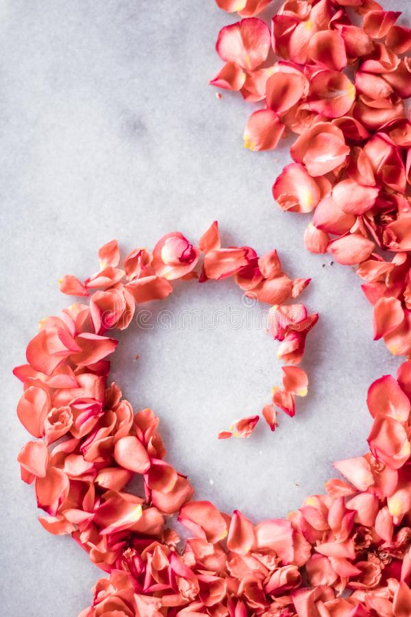coral rose petals on marble, color of the year - flower backgrounds and holidays concept stock photos
