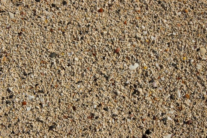 Coral Sand imagem de stock royalty free