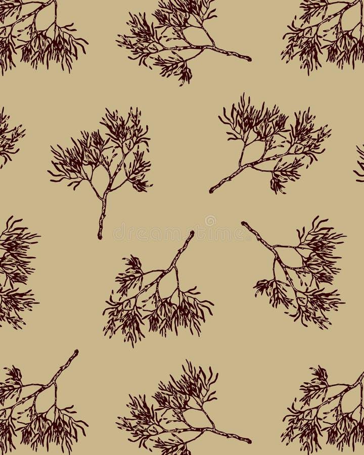 Coral Seamless Pattern Vetora tirada mão ilustração stock