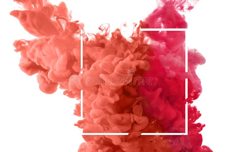 Color splashes of ink. Coral splashes of ink in water isolated on white stock image